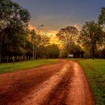 Camino al Parque Manantial